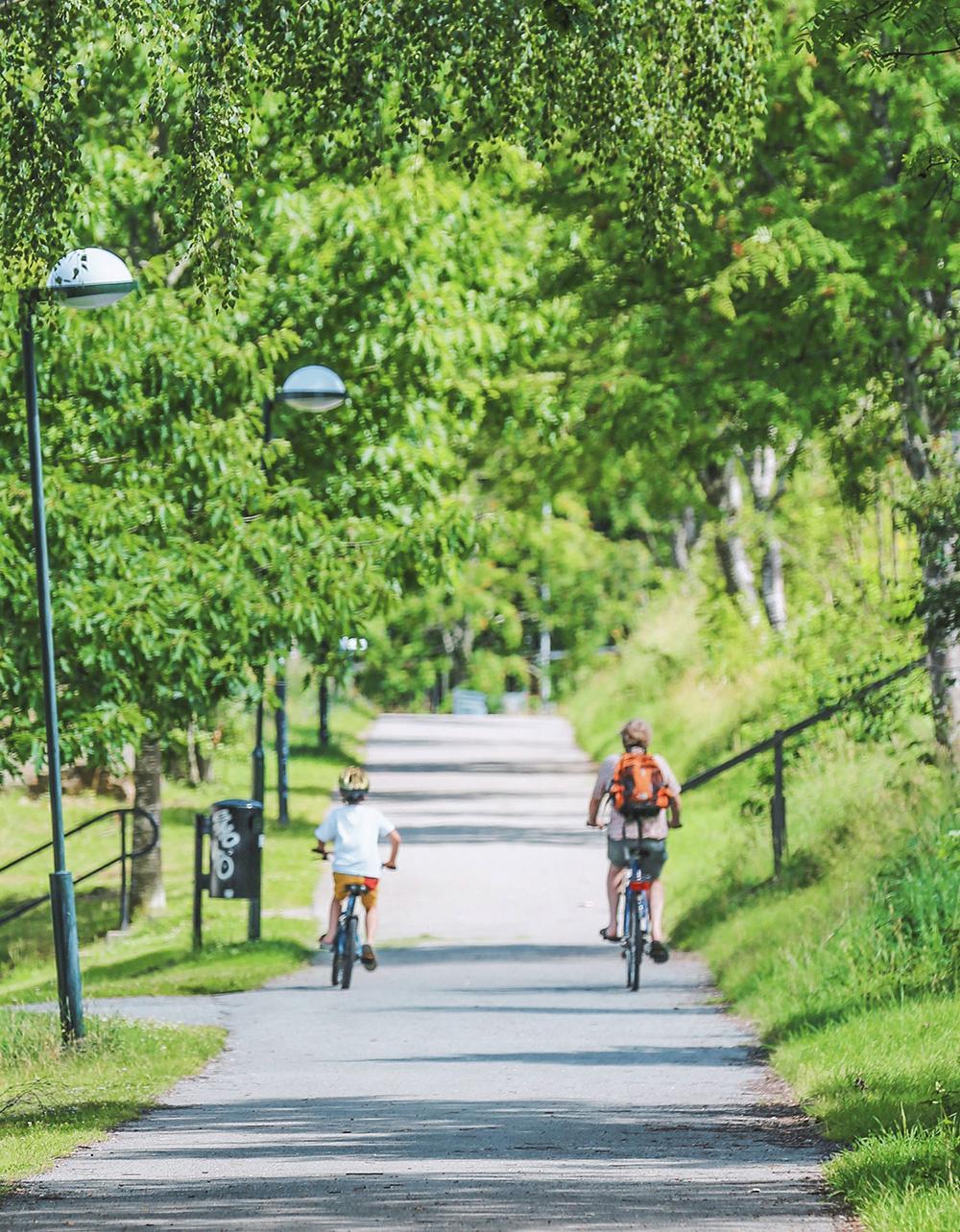 Jyväskylän Yliopisto Liikunta